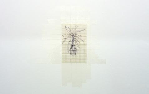 <p>Joséphine Flynn, <strong><em>The Plant (II)</em></strong>, 2009, dessin stylo bille sur papier, scotch, 20×12,5cm. Vue de l'exposition<em>A Limoncello Punctuation Programme</em> de Limoncello, Néon, Lyon, 2010. Photo : Maxime Rizard / Néon.</p>