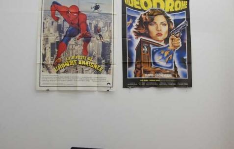 <p>Dodeskaden, accrochage quotidien (ici le 14.04.11) de la collection d&rsquo;affiche de Marco XXX. Vue de l'exposition <em>Série A B Z et VHS</em>, Néon, Lyon, 2011. Photo : JAC / Néon.</p>