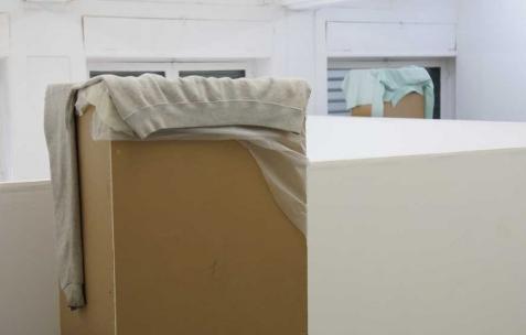<p>Commune, <strong><em>J'ai un pogona, donc je ne sais si les blattes lui iront aussi bien que les grillons</em></strong>, 2011, grillons. Vue de l'exposition <em>Commune</em>, Néon, Lyon, 2011. Photo : JAC / Néon, 2011.</p>