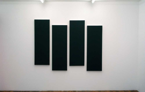 <p>Hugo Schüwer-Boss, <strong><em>Black Flag 3D</em></strong>, 2011, acrylique sur toile, 4 toiles de 40x120cm. Vue de l&rsquo;exposition <em>Mute</em>, Néon, Lyon, 2011. Photo : Cécile Meynier / Néon.</p>