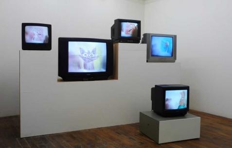 <p>Quentin Maussang, <strong><em>Ah, ah, ah, animal</em></strong>, 2012, moniteurs, lecteurs dvd, bois. Vue de l'exposition <em>Ah, ah, ah, animal</em>, Néon, Lyon, 2012. Photo : Maxime Rizard / Néon.</p>