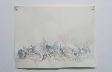 <p>Quentin Maussang, <strong><em>Sans titre</em></strong>, 2012, aquarelle, 24x32cm. Vue de l&rsquo;exposition <em>Ah, ah, ah, animal</em>, Néon, Lyon, 2012. Photo : Maxime Rizard / Néon.</p>