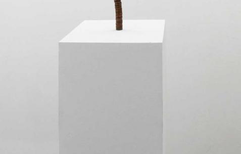<p>Aurélien Arbet & Jérémie Egry, <strong><em>99¢</em></strong>, 2012, 99 pièces de 1 cents. Vue de l'exposition <em>Chute Libre</em>, Néon, Lyon, 2012. Photo : Arbet & Jérémie Egry / Néon, 2012.</p>