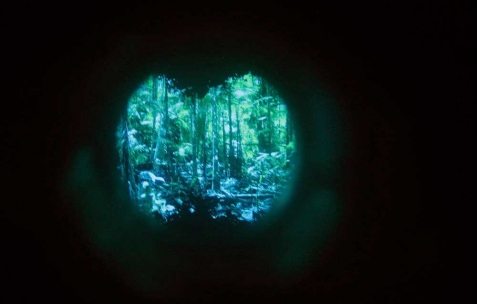 <p>Lee Jaffe, <strong><em>By Bye Amazonas</em></strong> (détail), 2013, peinture à l'huile et à l'encaustique, écran vidéo 3D, jumelles trafiquées, haut- parleurs, 188×250 cm. Vue de l'exposition <em>By Bye Amazonas (around the bend),</em> Néon, Lyon, 2013. Photo : Lorenzo Acciai / Néon, 2013.</p>