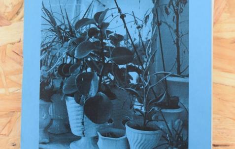 <p>Dieudonné Cartier, <strong><em>Selection of collection &#8211; N°14 &#8211; (Denereaz &amp; Forget Berthoux)</em></strong>, photocopie sur papier couleur, 20 pages, 20 exemplaires numérotés, 10,5&#215;14,8cm, édité par Théophile's Papers, produit par Néon, 2014. Théophile's Papers en résidence chez Néon 2014 &#8211; 2016. Vue de l'exposition <em>About book</em> <em>&#8211; A/F</em>. Photo : Anne Simonnot / Néon, 2014.</p>