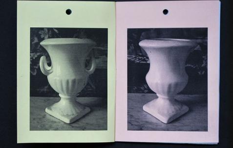 <p>Dieudonné Cartier, <strong><em>Selection of collection &#8211; N°14 &#8211; (Denereaz &amp; Forget Berthoux)</em></strong>, photocopie sur papier couleur, 20 pages, 20 exemplaires numérotés, 10,5&#215;14,8cm, édité par Théophile's Papers, produit par Néon, 2014. Photo : Dieudonné Cartier, 2014.</p>
