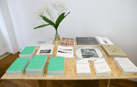 <p>Editions de Shelter Press (Bartolomé Sanson &amp; Félicia Atkinson). Théophile's Papers en résidence chez Néon 2014 &#8211; 2016. Vue de l'exposition <em>About book</em> <em>&#8211; B/F</em>. Photo : Anne Simonnot / Néon, 2014.</p>