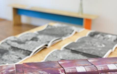 <p>Alexis Jacob, <strong><em>Perro Muerto Sleeping Dog, </em></strong>2014, risographie en noir et blanc avec insert couleur, 36 pages, seconde édition de 100 exemplaires, Théophile's Papers, 17x23cm. Théophile's Papers en résidence chez Néon 2014 &#8211; 2016. Vue de l'exposition <em>About book</em> <em>&#8211; C/F</em>. Photo : Anne Simonnot / Néon, 2015.</p>