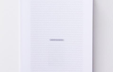 <p>Luca Monterastelli,<strong><em>Graceland</em></strong>, 2012, publication, texte deBeniamino Foschini,impression numérique, A4, 32 pages, 60 exemplaires. Photo : Valentin Defaux / Néon, 2016.</p>