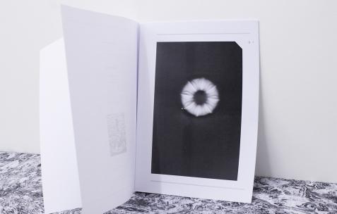 <p>Luca Monterastelli,<em>Very small deal #5<strong>, Rocaille</strong></em>, 2012, photocopie, A4, 60 exemplaires, numérotés et signés,<strong><em>Graceland</em></strong>, 2012, publication, texte deBeniamino Foschini,impression numérique, A4, 32 pages, 60 exemplaires. Photo : Valentin Defaux / Néon, 2016.</p>