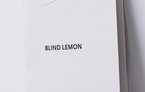<p>Sebastien Maloberti, <strong><em>Blind Lemon</em></strong>, 2013, publication, 21×29,7cm. Photo : Valentin Defaux / Néon, 2016.</p>