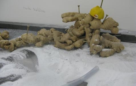 <p>Jean-Alain Corre, Psycho Building, 2009, gingembre, vis, citron, 60x25x40cm. Vue de l'exposition <em>A Johnny Machine</em>, Néon, Lyon, 2009.</p>