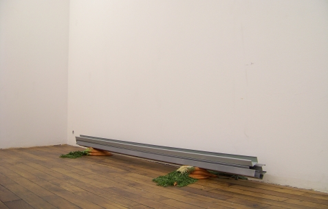 <p>Simon Feydieu et Jean-Alain Corre, <strong><em>House for Donald</em></strong>, 2009, rails pour placo BA13 peints, carottes, dimensions variables. Vue de l'exposition <em>Mineral Murder,</em> Néon, Lyon, 2009. Photo : JAC.</p>
